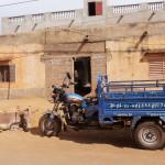 Mali-Sylwii-2015-16-067