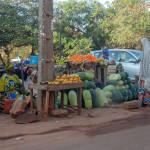 Mali-Sylwii-2015-16-296