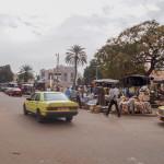Mali-Sylwii-2015-16-669