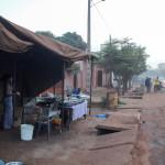 Mali-Sylwii-2015-16-739
