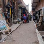 Mali-Sylwii-2015-16-756