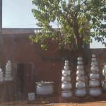 Mali-Sylwii-2015-16-341