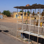 Mali-Sylwii-2015-16-366