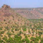 Mali-Sylwii-2015-16-463